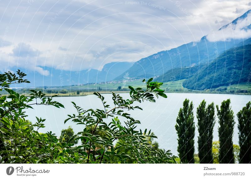 Lake Kaltern Wellness Relaxation Calm Vacation & Travel Summer Summer vacation Environment Nature Landscape Sky Storm clouds Weather Tree Bushes Alps Mountain