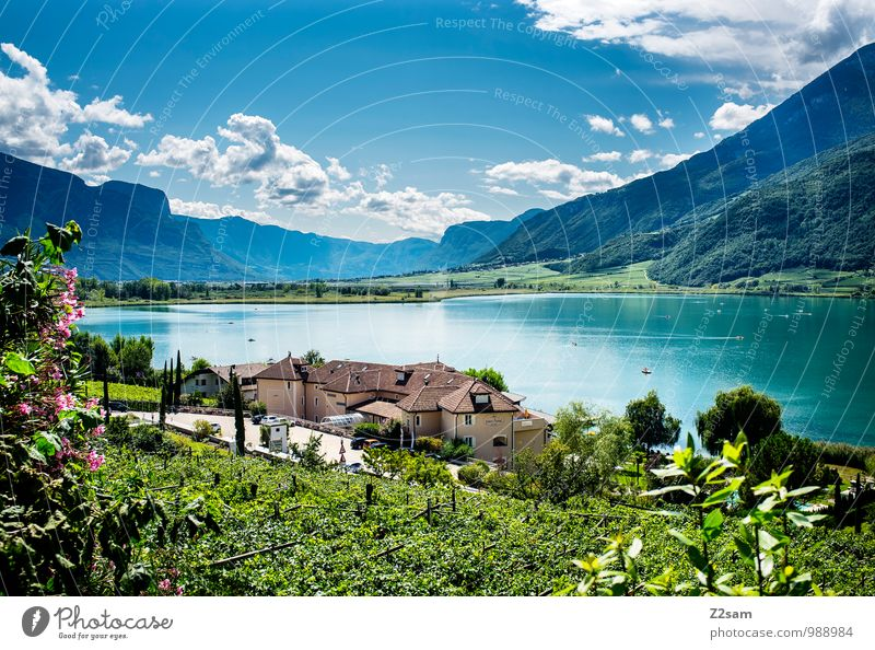 Lake Kaltern Environment Nature Landscape Sky Clouds Sun Summer Beautiful weather Bushes Alps Mountain Lakeside Village Sustainability Natural Blue Green