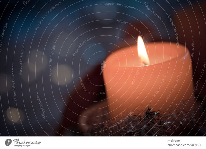Advent Winter Relaxation Feasts & Celebrations To enjoy Illuminate Glittering Cuddly Blue Gold Orange Moody Warm-heartedness Goodness Calm Hope Belief Concern