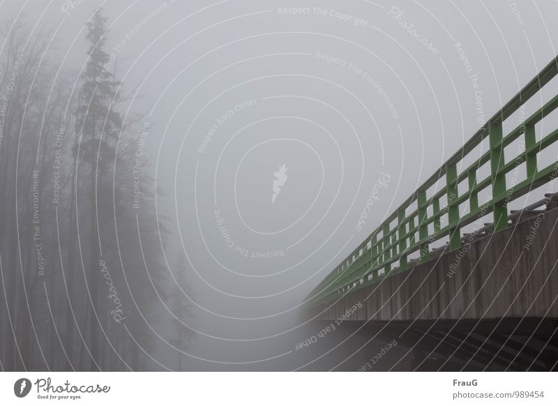 Quo vadis? Sky Autumn Weather Fog Tree Deserted Bridge motorway bridge Traffic infrastructure Road traffic Highway Overpass Gray Green Moody Colour photo