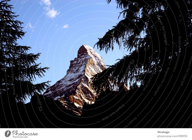Matterhorn VI Peak Switzerland Zermatt Canton Wallis Mountaineer Climbing Go up Mountain ridge Wall of rock Fir tree Tree Clouds Concealed Safety (feeling of)