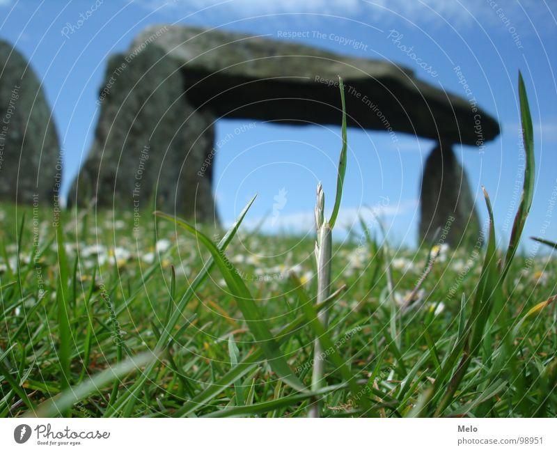 Green Blue Grass Stone Blade of grass England Menhir