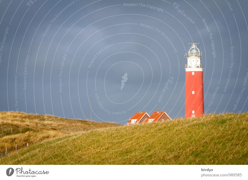 Lighthouse of Texel Vacation & Travel Island Nature Sky Clouds Autumn North Sea Dune Marram grass Netherlands Esthetic Authentic Friendliness Historic Positive