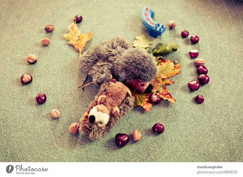 Child Leaf Playing Happy Happiness Study Group of children Toddler Autumn leaves Kindergarten Autumnal Parenting Circular Chestnut Hedgehog Plush