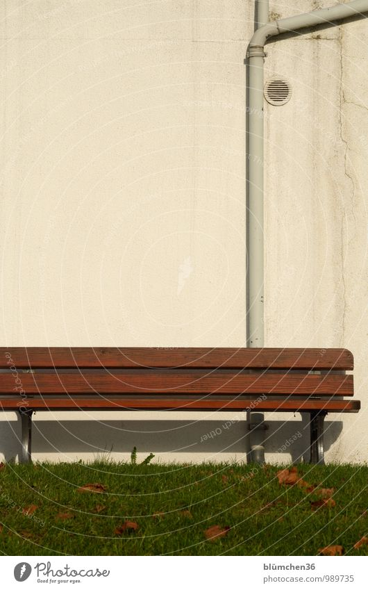 City Relaxation Leaf Calm Warmth Wall (building) Meadow Grass Wall (barrier) Garden Park Sit Wait To go for a walk Lawn Bench