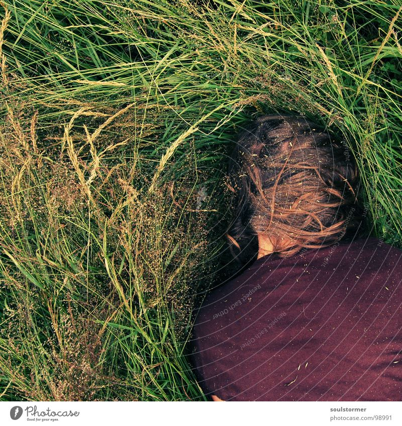 Human being Nature Plant Summer Relaxation Meadow Grass Hair and hairstyles Head Young woman Lie Dirty Nose Corner Scream Square