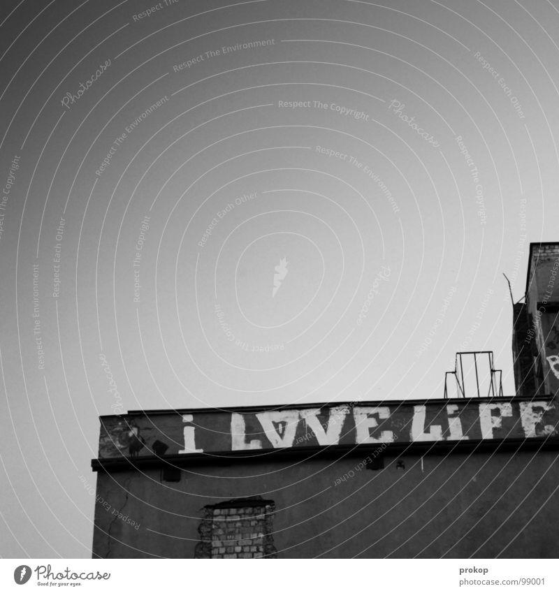 Old Sky City Joy Love House (Residential Structure) Life Gray Graffiti Power Concrete Modern Roof Culture Joie de vivre (Vitality)