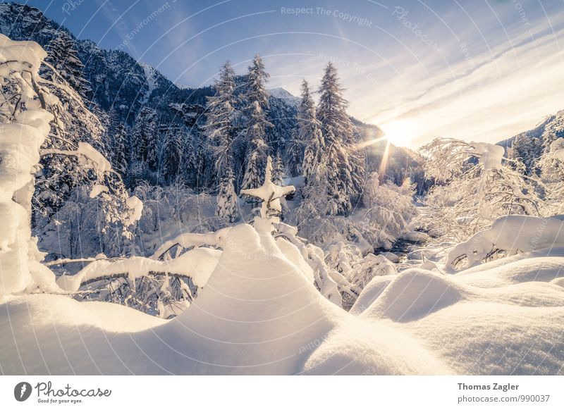 Winter in the Italian Alps Vacation & Travel Adventure Far-off places Freedom Winter vacation Mountain Hiking Nature Landscape Sky Sunrise Sunset