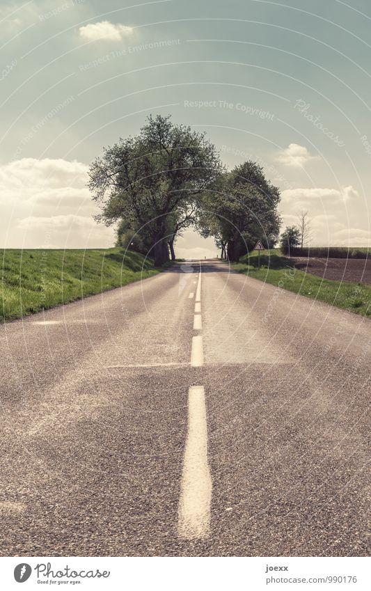 Tree Street Lanes & trails Future Hope Target Traffic infrastructure Lane markings