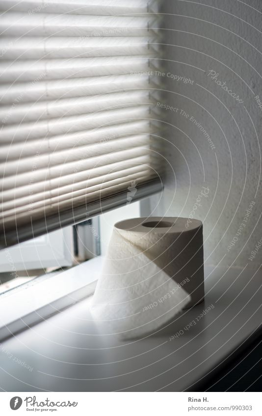 Relaxation Window Authentic Bathroom Toilet Window board Venetian blinds Toilet paper Digestive system