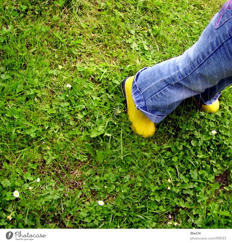 GiG (rubber boots in the grass) Rubber boots Grass Green Grass green Boots Yellow Latex India rubber Child Meadow Field Leisure and hobbies