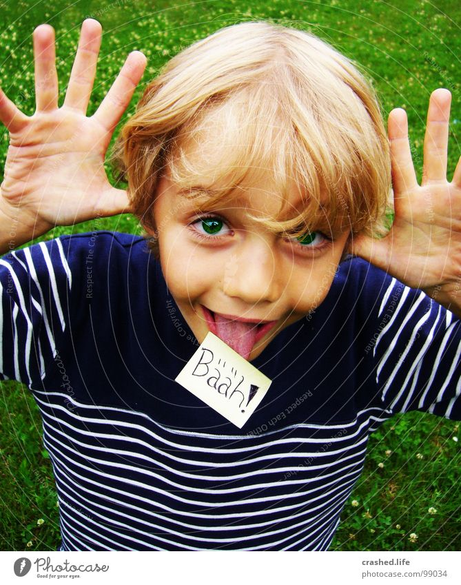 Child Hand Green Face Eyes Boy (child) Grass Hair and hairstyles Blonde Nose Fingers Piece of paper Tongue Brash Grass green