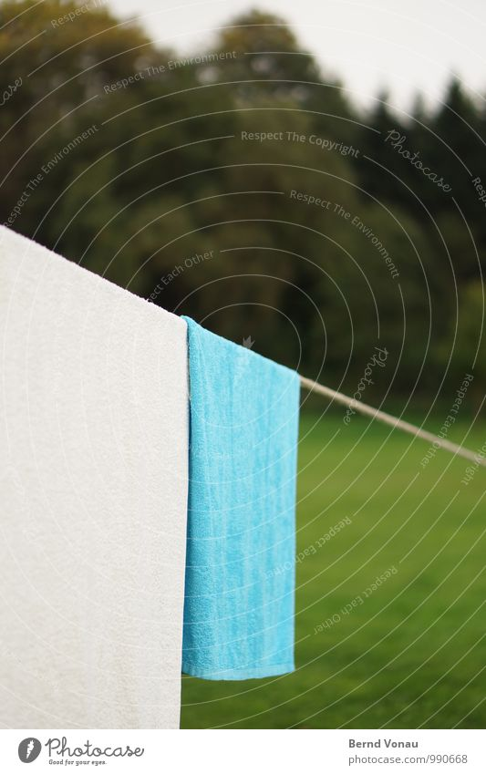 hang out Camping Rope Grass Forest Wet Blue Green Wisdom Geometry Towel Dry Lawn Grass surface Flat Tilt Laundry Division Nature Sports Terry cloth Downward