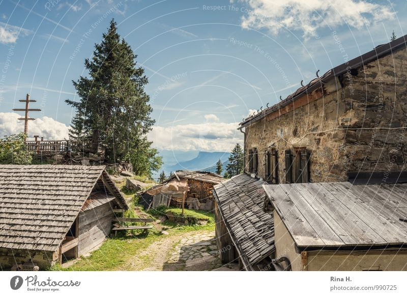 rest Hiking Vacation & Travel Trip Clouds Summer Beautiful weather Tree Grass Mountain South Tyrol House (Residential Structure) Hut Building Roof Relaxation