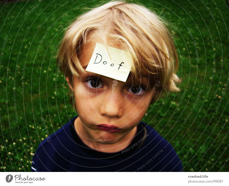 Child Green Face Eyes Grass Hair and hairstyles Mouth Blonde Nose T-shirt Ear Stupid Piece of paper Grass green
