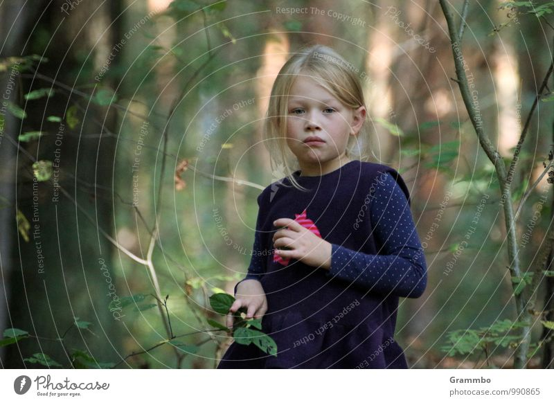 Human being Child Plant Tree Forest Autumn Feminine Dream Bushes Infancy Wait Beautiful weather Foliage plant Wild plant 3 - 8 years