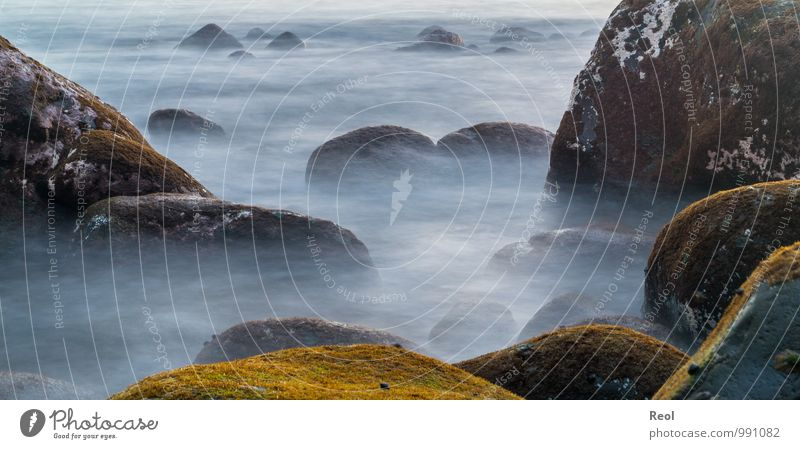 Mystical Environment Nature Elements Earth Water Waves Coast Beach Ocean Atlantic Ocean Stone Rock Rocky coastline Creepy Gray White Moss Silhouette Sea of fog
