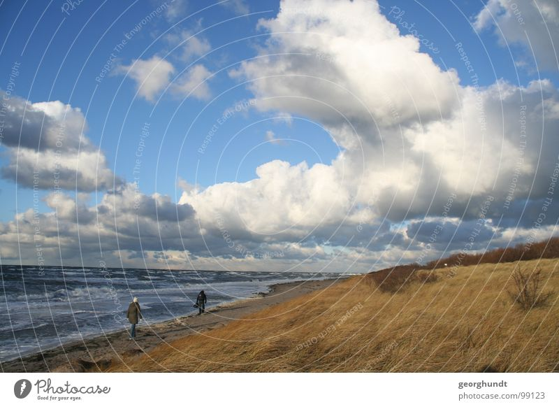 Water Ocean Beach Clouds Movement Sand Landscape Coast Germany Wind Weather Island Gale Storm Beach dune Agitated