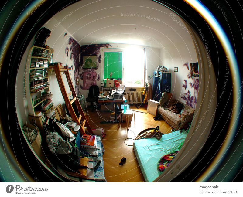 House (Residential Structure) Life Window Wall (building) Printed Matter Room Sit Dirty Flat (apartment) Arrangement Lie Interior design Lifestyle Fisheye Bushes Living or residing