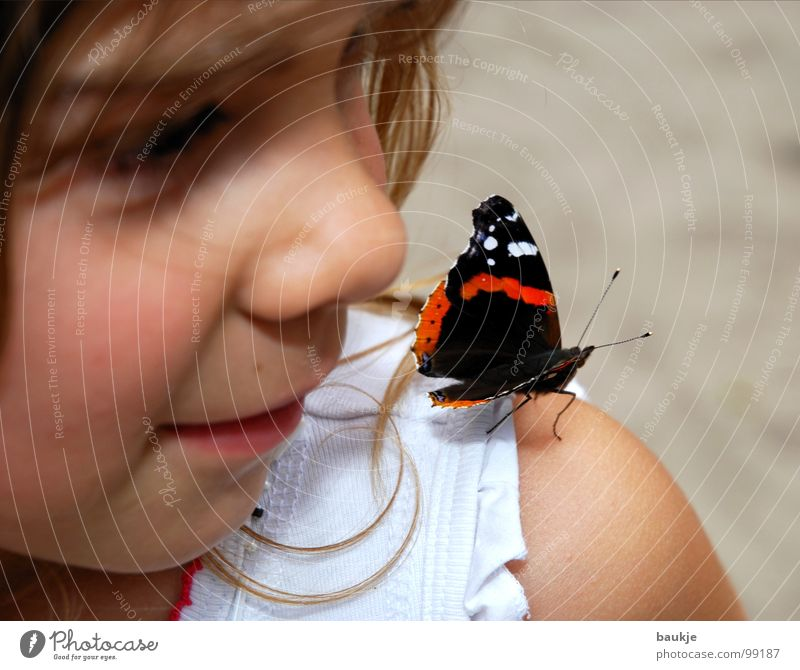 Child Girl Beautiful Summer Joy Face Calm Love Animal Relaxation Sand Contentment Nose Flying Near Insect