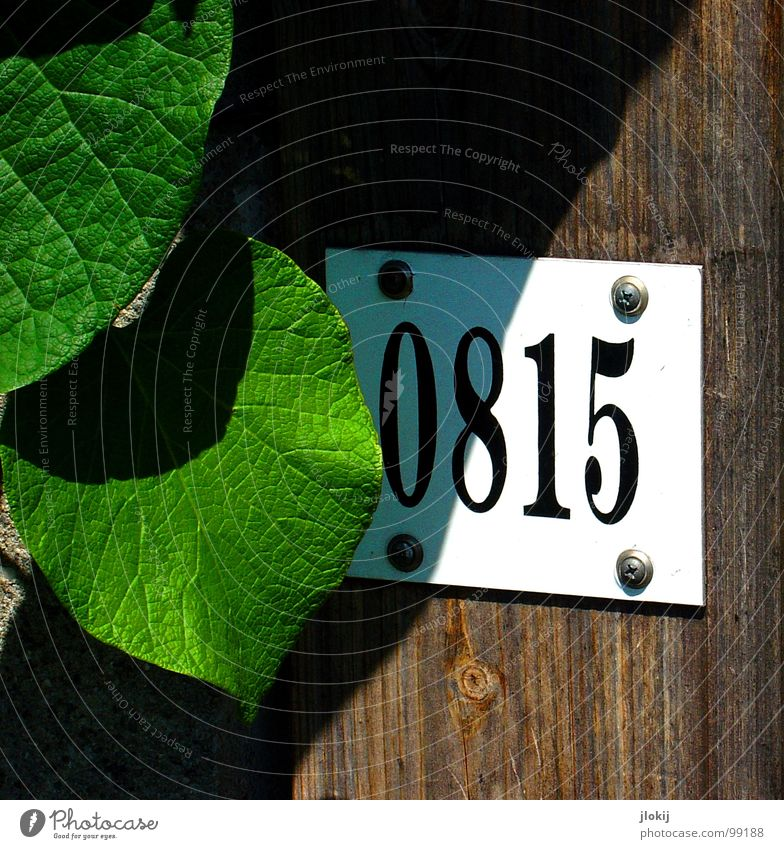 Sun Leaf Garden Wood Door Search Signs and labeling Characters Digits and numbers Gate Signage Row Guy Fence Share 8