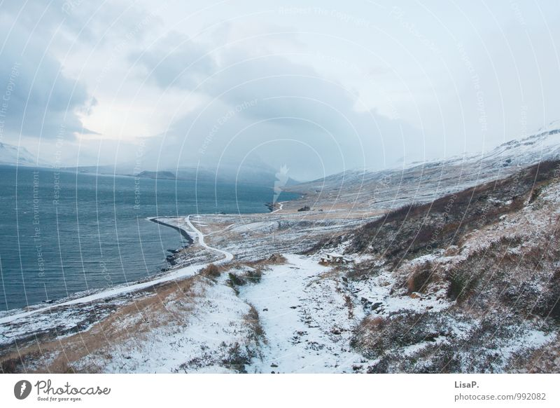 Curvy Environment Nature Landscape Plant Winter Climate Hill Mountain Coast Iceland Stagnating Calm Curve Street Clouds Colour photo Exterior shot Deserted
