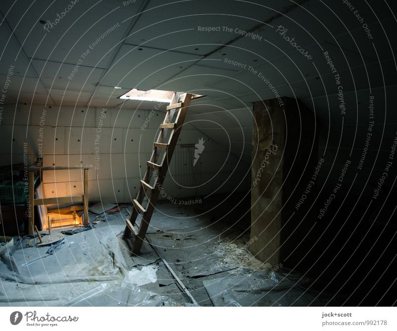 Secret under the roof Attic Construction site Ladder Covers (Construction) Authentic Dark Simple Cold Above Safety (feeling of) Lanes & trails Hatch Free space