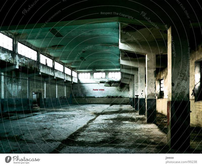 Animal Death Window Sadness Fear Concrete Transience Derelict Fear of death Division Decline Column Ruin Odor Kill Moral