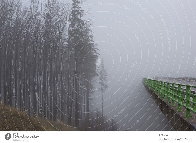 Sky Green Tree Forest Autumn Gray Metal Weather Car Fog Dangerous Concrete Bridge Driving Manmade structures Bridge railing