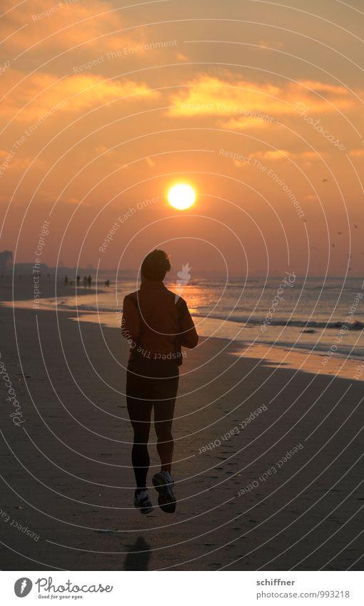 Belgian late sport Human being Masculine Man Adults 1 30 - 45 years Walking Running Jogging Beach Ocean Coast Sunset Hover Evening Evening sun Belgium