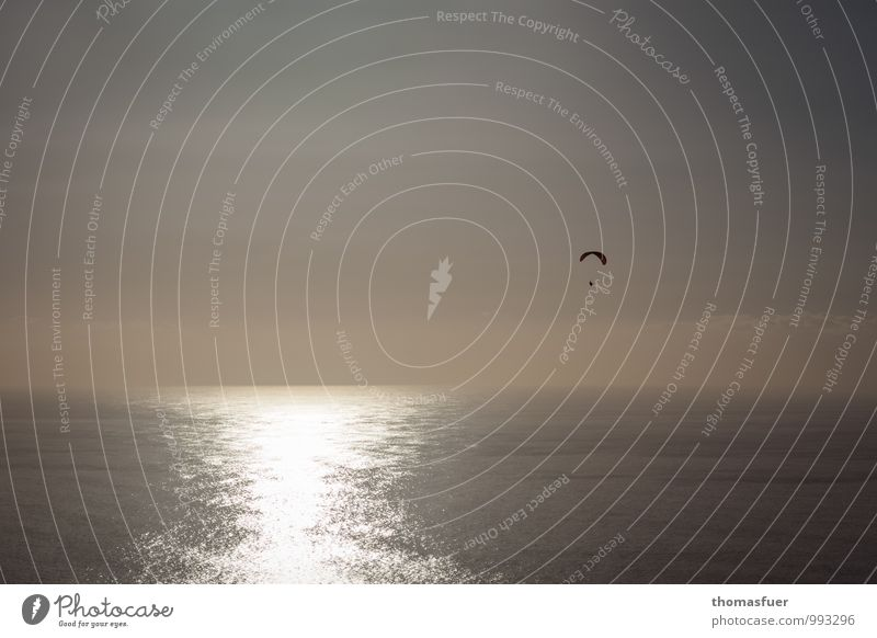 Icarus Paragliding Adventure Far-off places Freedom Sightseeing Summer Beach Ocean Waves Sports Paraglider Human being 1 Sky Cloudless sky Horizon Sunrise