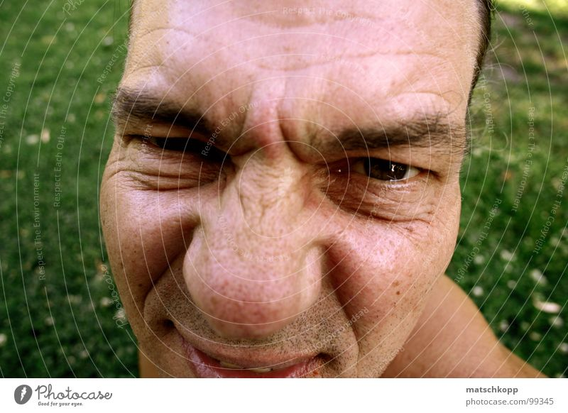 Man Green Face Eyes Meadow Grass Park Skin Nose Perspective Lawn Shoulder Skeptical Eyebrow Potatoes Lawn for sunbathing