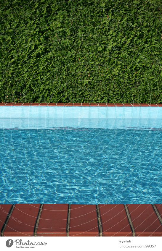 Blue Water Green Vacation & Travel Summer Warmth Garden Park Flat (apartment) Wet Empty Corner Swimming pool Physics Tile Damp