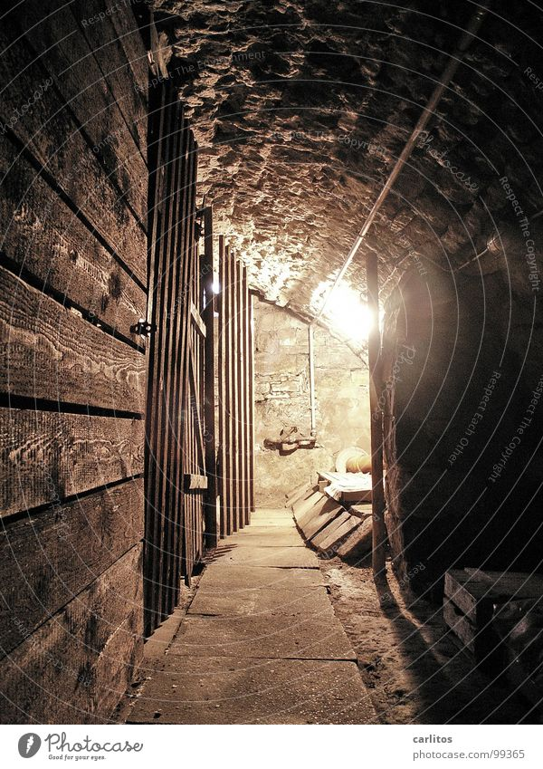 at the very bottom Cellar Barrel vault Tunnel Natural stone Monument Preservation of historic sites Subsidy Light Historic Living or residing Old town