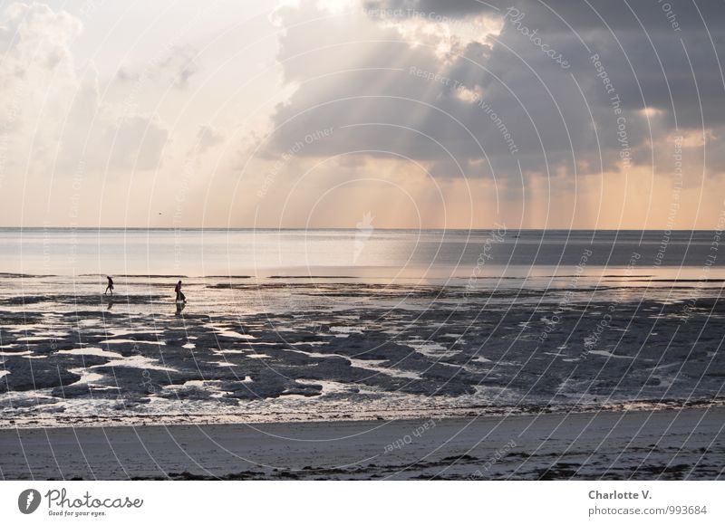 in the morning by the sea Vacation & Travel Beach Ocean Human being 2 Landscape Elements Sand Water Clouds Sunrise Sunset Sunlight Indian Ocean Low tide