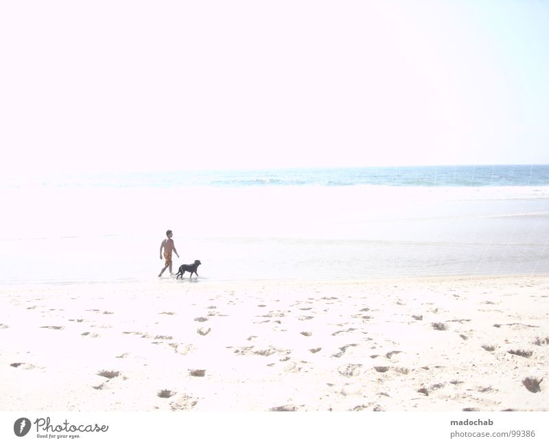 MR. GASSI & FRIENDS Man Dog Beach Overexposure White Innocent Ocean Summer Portugal Vacation & Travel Human being Air Physics Pleasant Healthy Animal walk Stand