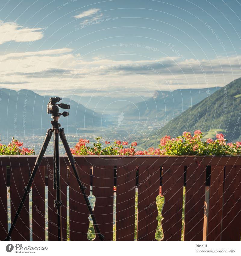 View with tripod Environment Nature Plant Horizon Summer Beautiful weather Flower Mountain Balcony Bright Vacation & Travel Contentment Meran Handrail Tripod