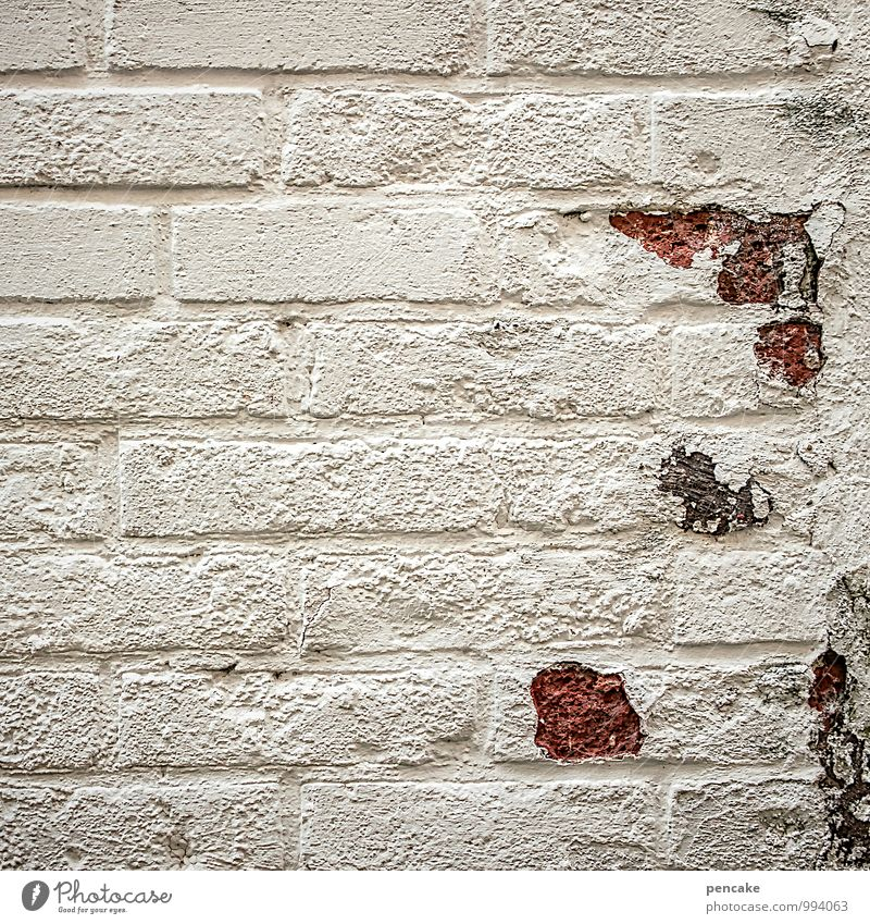 cute Old town House (Residential Structure) Wall (barrier) Wall (building) Facade Stone Uniqueness Decline Brick White Plastered Cute Spring cleaning Flake off