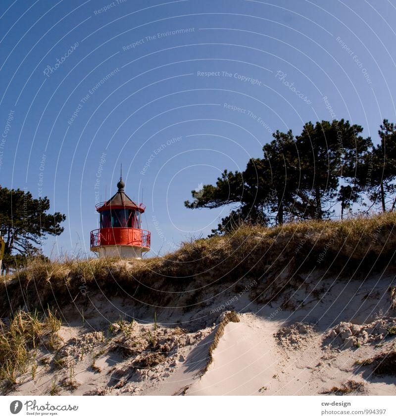 Nature Vacation & Travel Summer Sun Tree Landscape Relaxation Beach Lifestyle Lanes & trails Coast Grass Sand Horizon Contentment Communicate