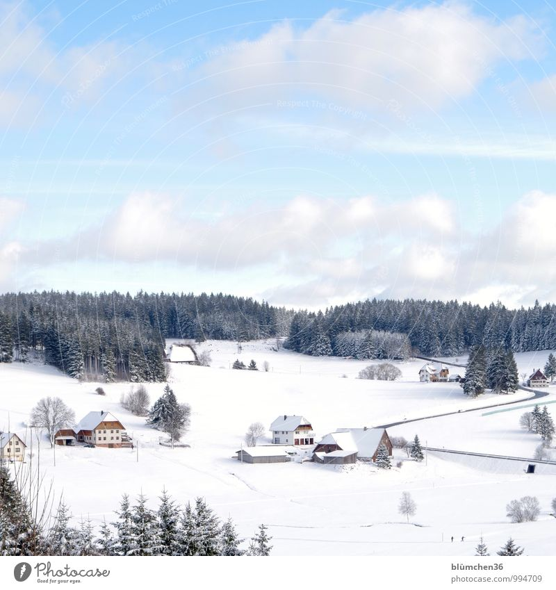 Sky Nature Vacation & Travel Relaxation Landscape House (Residential Structure) Winter Forest Cold Mountain Snow Germany Air Idyll Contentment Tourism