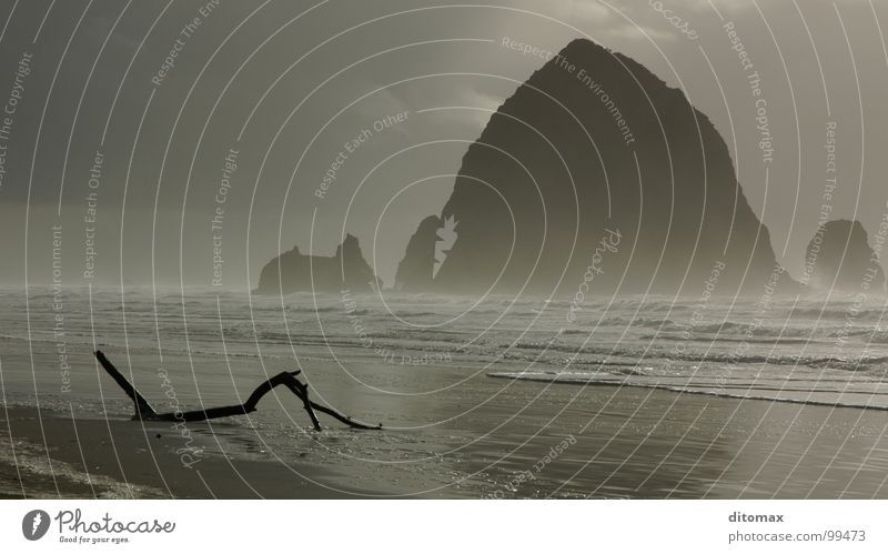 Haystack Branch Oregon Wood flour Nature Beach USA Water Beautiful haystack rock Canon Beach sea fog waves pacifist clouds