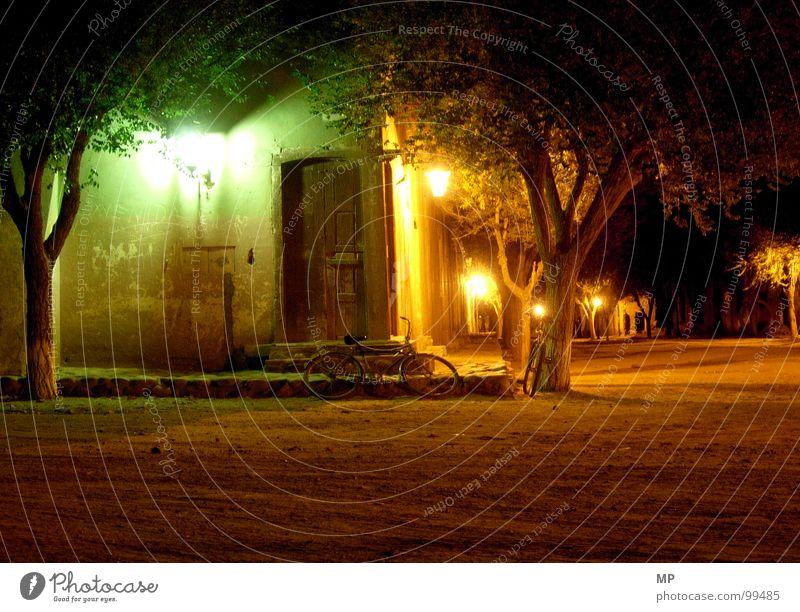 The sleeping messenger Night Light Lantern Tree Village Loneliness Oversleep Peace Lamp Moody Traffic infrastructure bicycle Peaceful Calm lovepool Fatigue