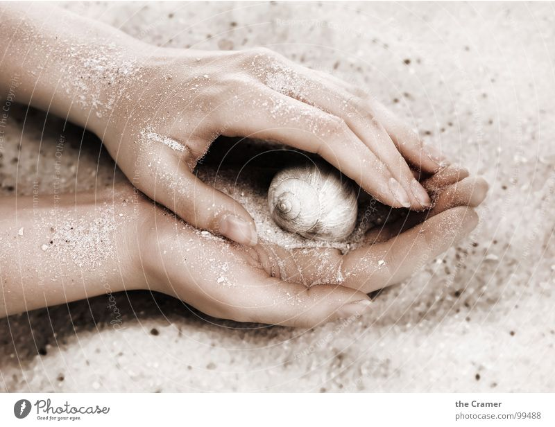 Gentle Hand Physics Fingers House (Residential Structure) Nail Spiral Woman Trust Smooth drive Snail Protection Sand Warmth Circle feemal