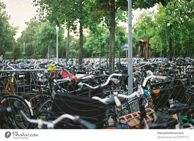 cycle Lifestyle Leisure and hobbies Cycling Going Bicycle Amsterdam Many Crowded Parking area 35mm film Colour photo Exterior shot Evening