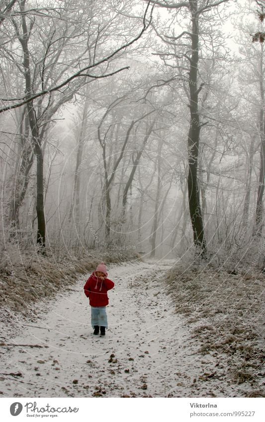 winter forest Child Toddler Girl Brother Sister Family & Relations Infancy 1 Human being 3 - 8 years 8 - 13 years Environment Nature Landscape Winter Climate