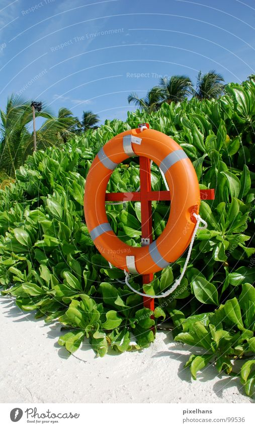 White Green Blue Summer Beach Orange Rope Help Circle Safety Bushes Hot Palm tree Rescue Maldives Blue sky
