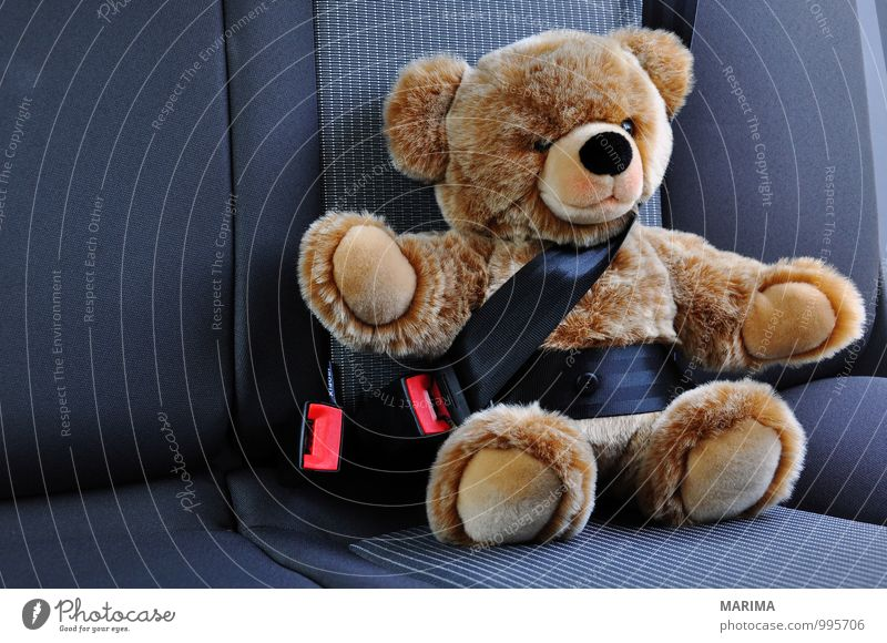 Teddy belted in the car Child Street Car Toys Teddy bear Cuddly toy Driving Sit Brown Black Safety Protection buckled on with attached seatbelts Carriage
