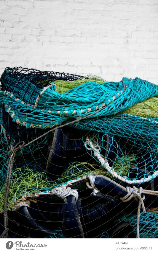 Ocean Green Yellow Wall (barrier) Fish Net Catch Craft (trade) Turquoise Baltic Sea Fishing (Angle) Catching net Rügen Fishery Zone Masonry