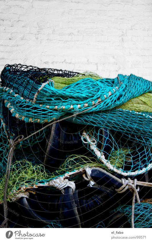 Ocean Green Yellow Wall (barrier) Fish Net Catch Craft (trade) Turquoise Baltic Sea Fishing (Angle) Catching net Rügen Fishery Zone Masonry