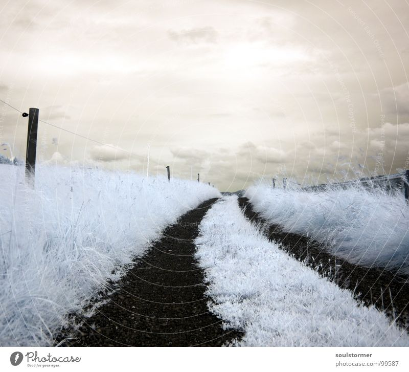 Sky White Red Black Clouds Meadow Grass Dream Lanes & trails Think Funny To go for a walk Exceptional Fence Surrealism